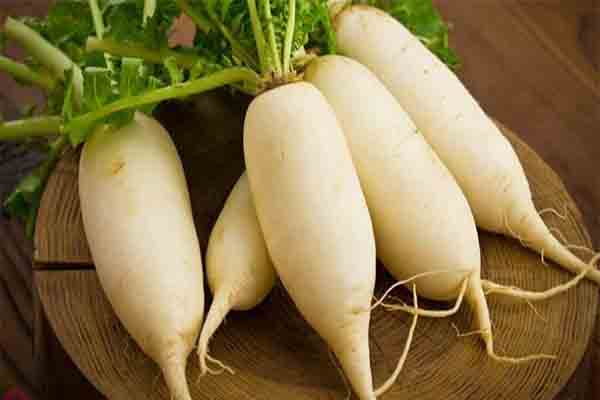 Cũ cải trắng chữa chứng táo bón hiệu quả