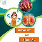 So sánh bệnh lậu và bệnh giang mai | Bệnh xã hội | Đa khoa Gia Phước